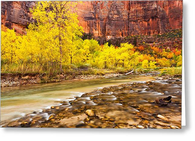 James Marvin Phelps Greeting Cards - Flowing Into Autumn  Greeting Card by James Marvin Phelps