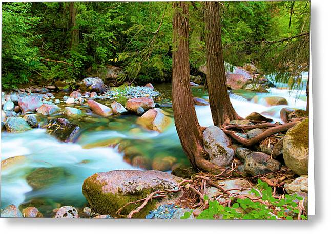 Flowing Into The Solace Greeting Card by Jeff Swan