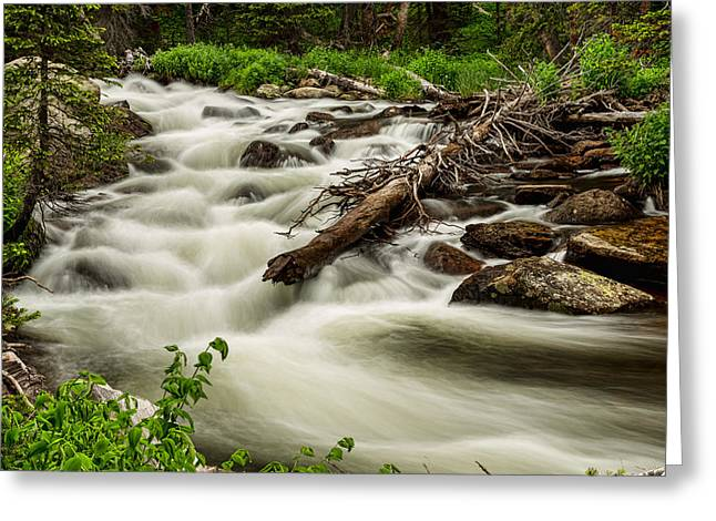 Beauty Creek Greeting Cards - Flowing Rocky Mountain Stream Greeting Card by James BO  Insogna