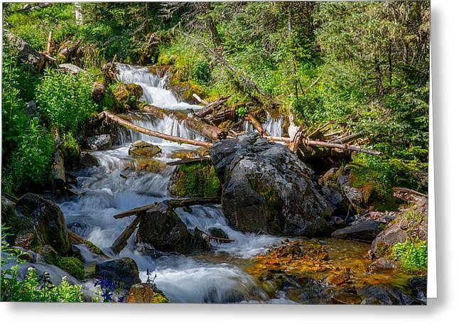 Water Flowing Greeting Cards - Flowing Greeting Card by Sean Ramsey