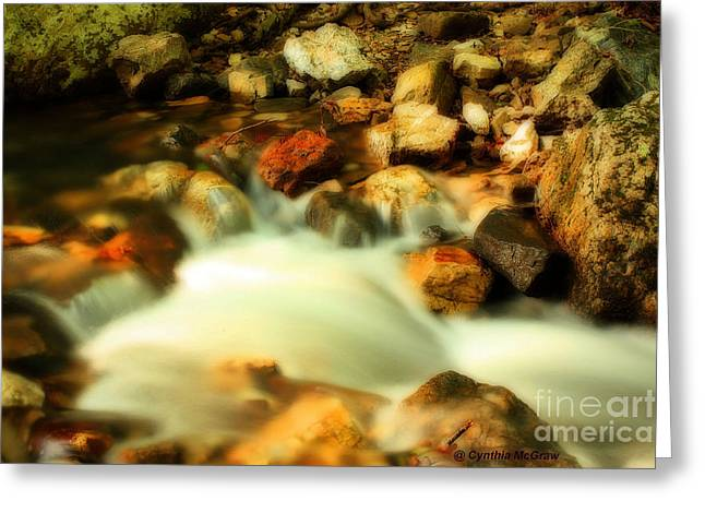 Arkansas Greeting Cards - Flowing Stream Greeting Card by Cynthia Broomfield