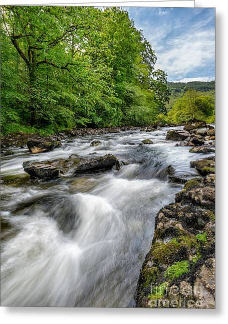Flowing Stream Greeting Cards - Flowing Water Greeting Card by Adrian Evans