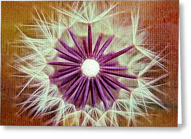 Dandelion Digital Greeting Cards - Fluffy Sun - s20b-t01sq Greeting Card by Variance Collections