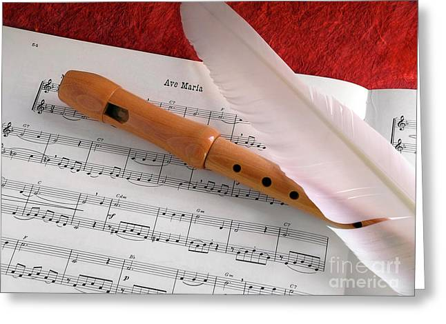 Tunes Greeting Cards - Flute and Feather Greeting Card by Carlos Caetano