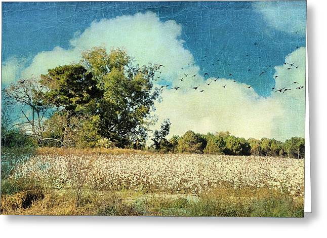 Georgia Cotton Fields Greeting Cards - Fly Away Home Greeting Card by Jan Amiss Photography