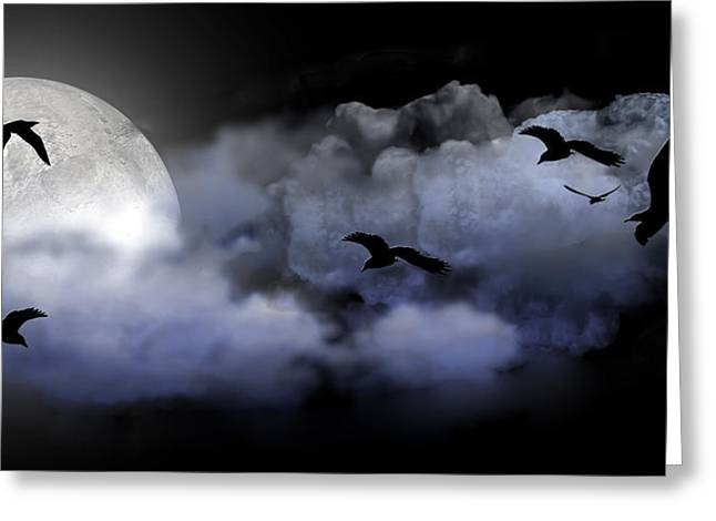Fly By Night Greeting Card by Evelyn Patrick