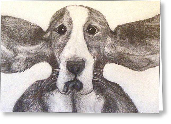 Basset Drawings Greeting Cards - Fly Dog Greeting Card by Rebecca Robinson