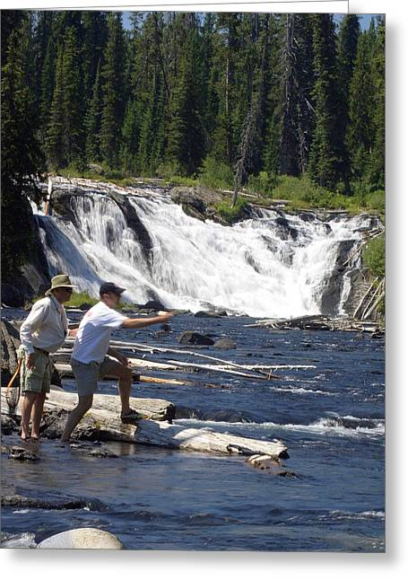 Marty Koch Greeting Cards - Fly Fishing The Lewis River Greeting Card by Marty Koch