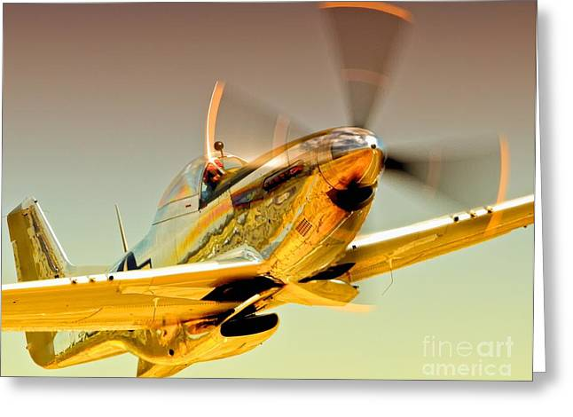 Planes Of Fame Greeting Cards - Flyin Golden Boeing North American P-51D Mustang and Brant Seghetti   Greeting Card by Gus McCrea