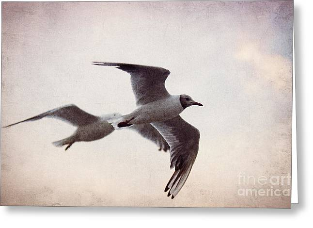 National Mixed Media Greeting Cards - Flying Greeting Card by Angela Doelling AD DESIGN Photo and PhotoArt