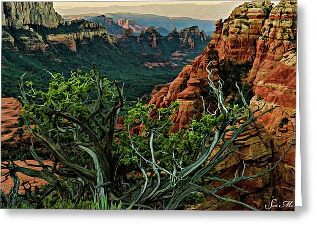Flying Buttress 06-015 Greeting Card by Scott McAllister