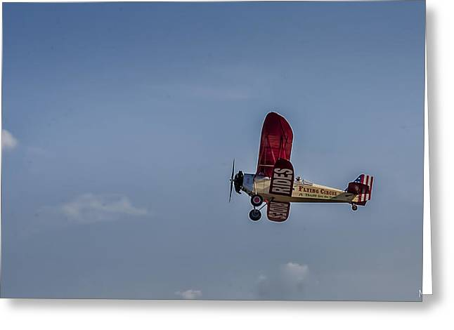 Barnstormer Greeting Cards - Flying Circus Greeting Card by Mark Fuge