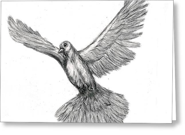 Flying Dove Greeting Card by Joy Neasley