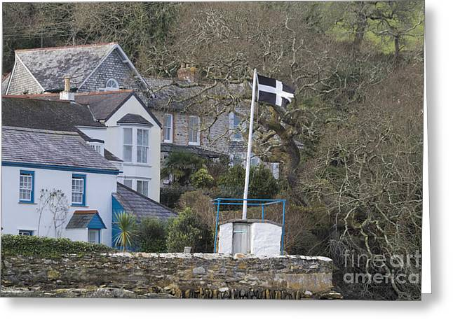 Flying The Flag For Cornwall Greeting Card by Terri Waters