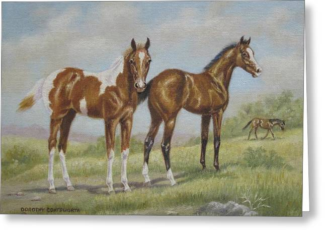 Foals in Pasture Greeting Card by Dorothy Coatsworth