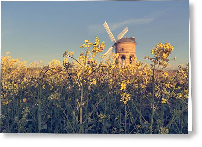 Warwickshire Greeting Cards - Focus on what is right in front of you Greeting Card by Chris Fletcher
