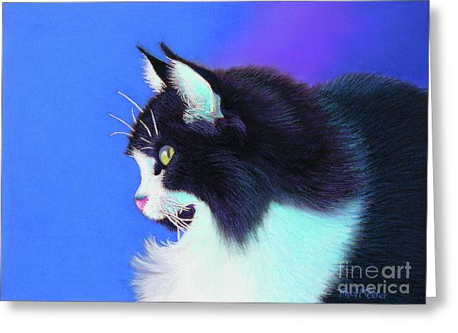 Feline Pastels Greeting Cards - Focus Greeting Card by Tracy L Teeter