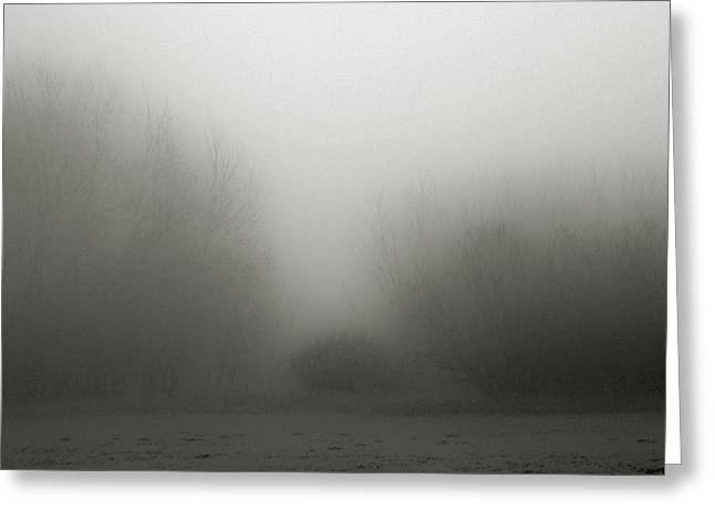Foggy Day Greeting Cards - Fog 006 Greeting Card by Mimulux patricia no