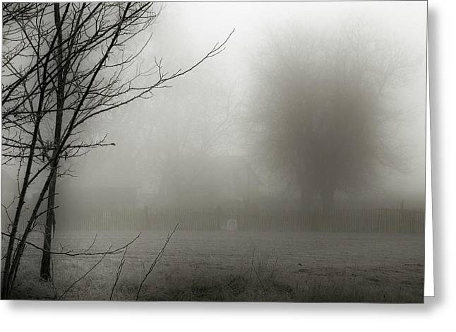 Foggy Day Greeting Cards - Fog 007 Greeting Card by Mimulux patricia no