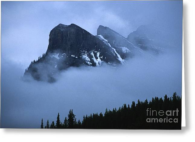 Snowstorm Greeting Cards - Fog and Clouds Greeting Card by Sandra Bronstein