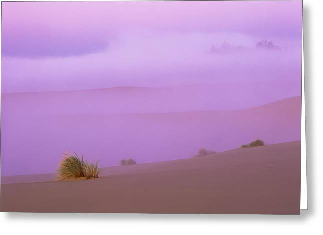 Oregon Dunes National Recreation Area Greeting Cards - Fog and Sunlight Greeting Card by Robert Potts