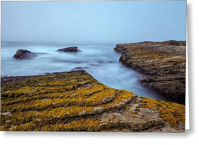 Foggy Beach Greeting Cards - Fog and The Sea Greeting Card by Jonathan Nguyen