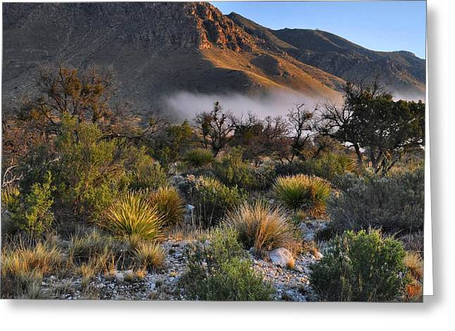 Guadalupe Greeting Cards - Fog At Sunrise - Guadalupe Mountains Greeting Card by Stephen  Vecchiotti