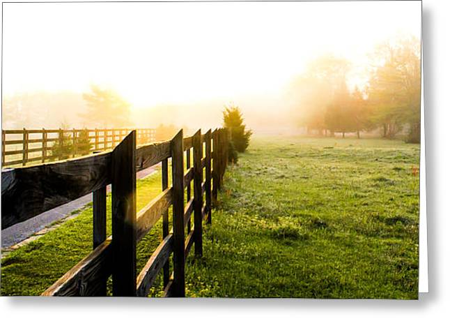 Dazed Greeting Cards - Fog in the Morning Greeting Card by Shelby  Young