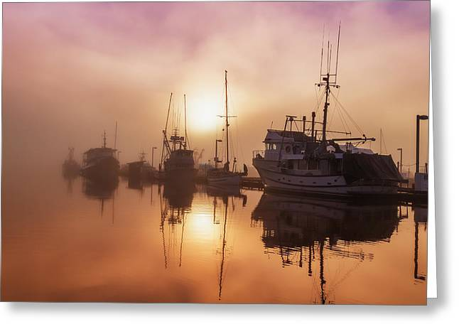 Reflections Of Sun In Water Greeting Cards - Fog Lifting Over Auke Bay Harbor Greeting Card by John Hyde