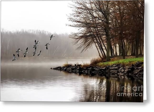 Fog On The Lake Greeting Card by Tom York Images