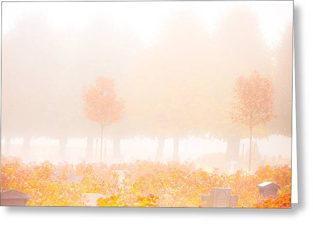 Condolences Greeting Cards - Fog Swept In Greeting Card by Maggie Terlecki