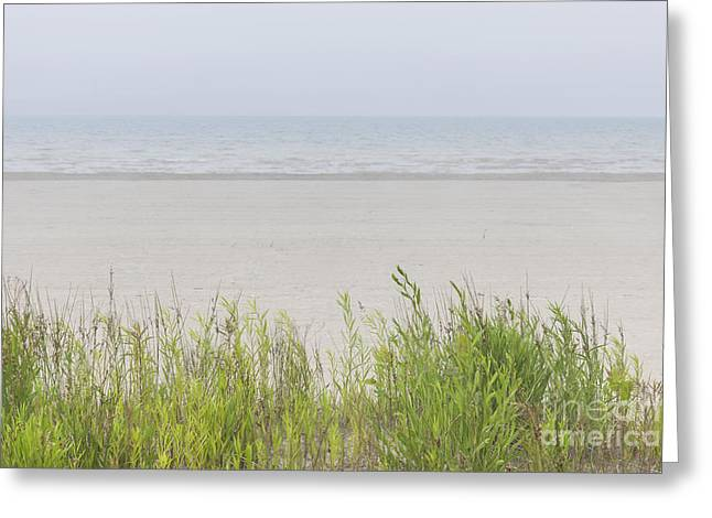 Foggy Beach Greeting Cards - Foggy beach Greeting Card by Elena Elisseeva