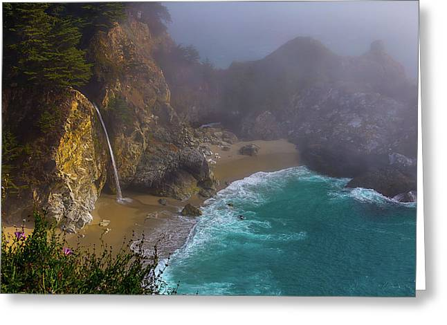 Foggy Cove Greeting Card by Garry Gay