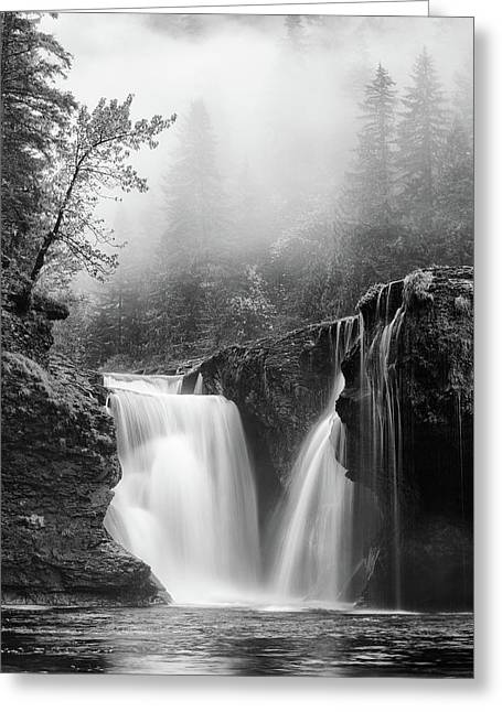 Foggy Falls Monochrome Greeting Card by Darren White