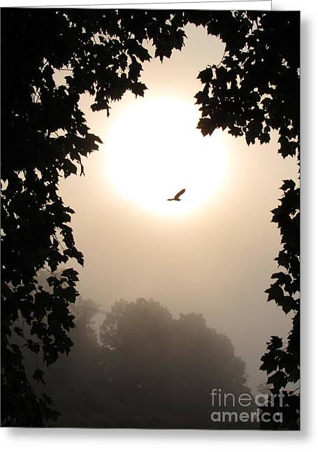 Peaceful Scene Greeting Cards - Foggy Heron Flight Greeting Card by Joshua Bales