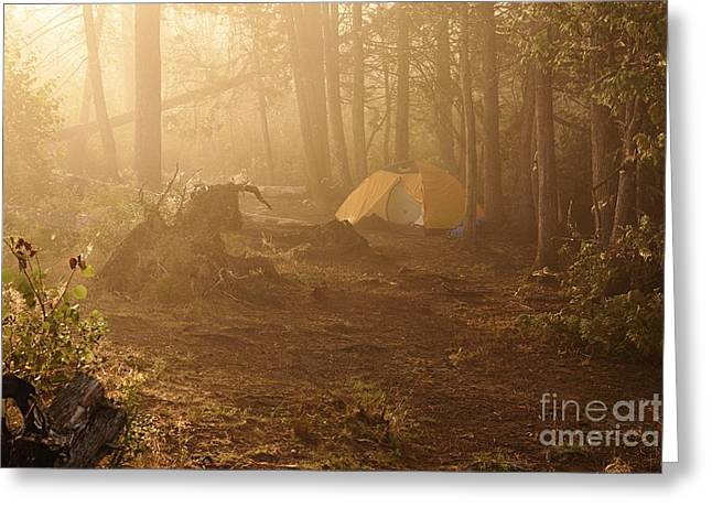 Foggy Morning At The Campsite Greeting Card by Larry Ricker