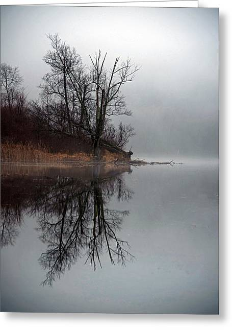 Nikkor Greeting Cards - Foggy morning at the lake Greeting Card by Deborah Bifulco