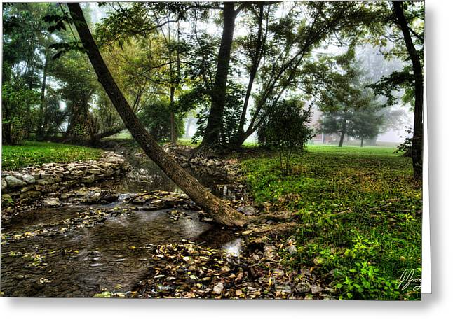 Woodland Scenes Greeting Cards - Foggy Morning by the Stream Greeting Card by Joshua Zaring