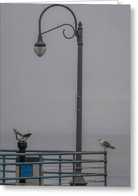 Sea Birds Greeting Cards - Foggy Morning Greeting Card by Ernie Echols