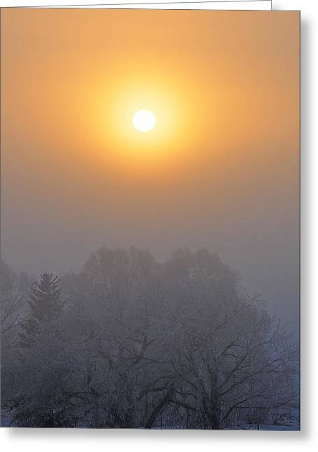Foggy Morning In Montana's Gallatin Valley Greeting Card by Bruce Gourley
