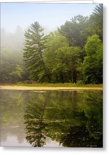 Reflection In Water Greeting Cards - Foggy Morning Lake Reflection Greeting Card by Christina Rollo