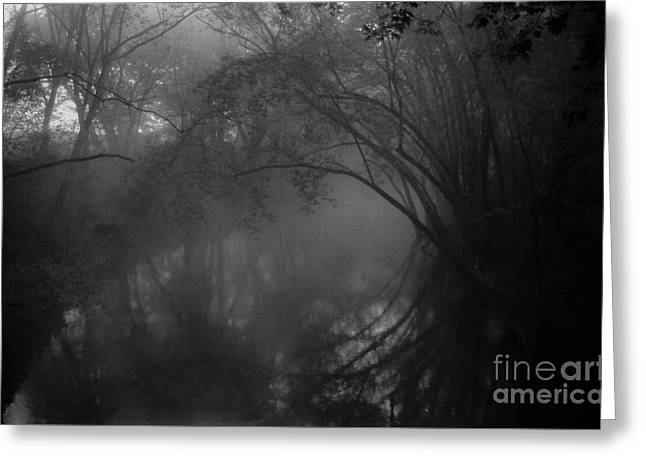 Southern Indiana Photographs Photographs Greeting Cards - Foggy Morning on the River Greeting Card by Lowell Anderson