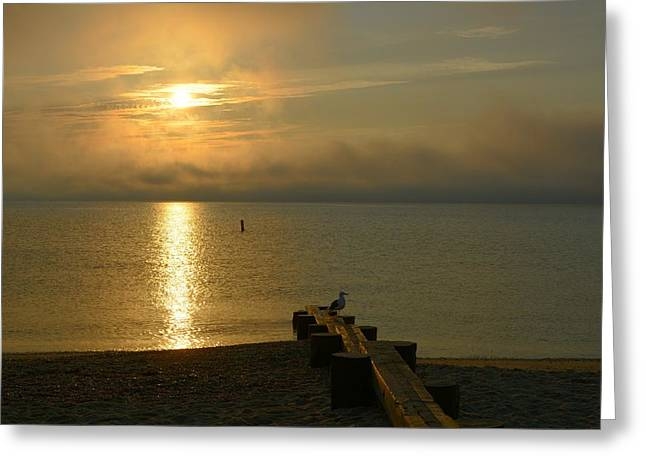 New England Ocean Greeting Cards - Foggy Morning Greeting Card by Rosemary Hildreth