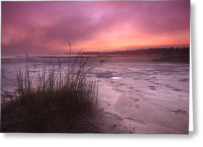 Foggy Beach Sunset Greeting Cards - Foggy Sunset at Singing Sands Greeting Card by Cale Best