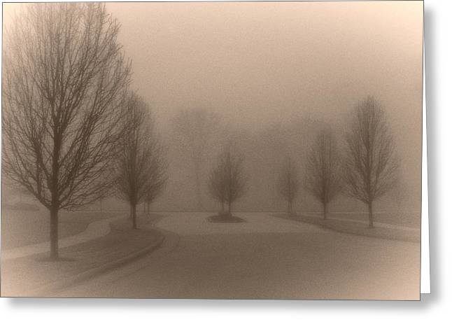 Eerie Greeting Cards - Foggy Trees Greeting Card by Jim Couchenour