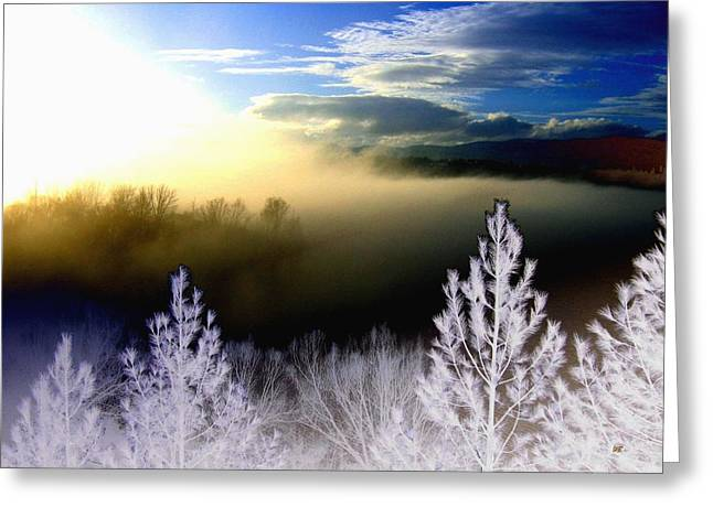 Dazzling Blue Greeting Cards - Foggy Winter Sunset Greeting Card by Will Borden