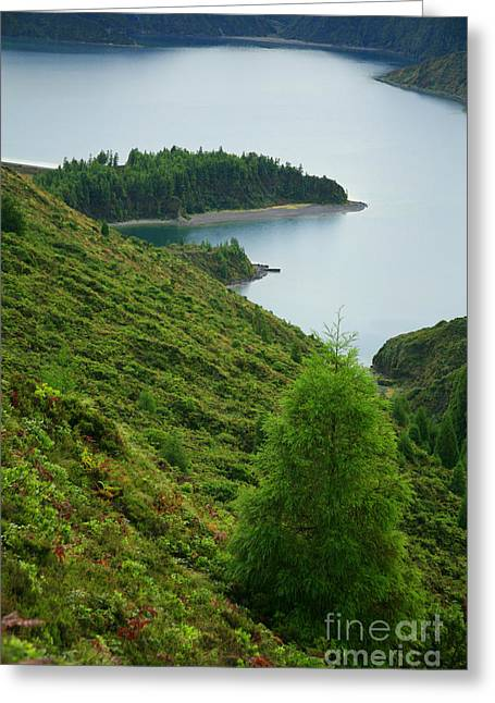 Azores Greeting Cards - Fogo crater Greeting Card by Gaspar Avila