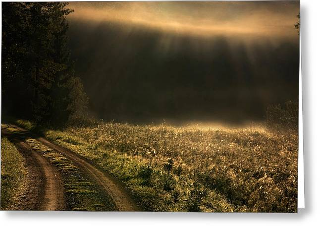 Sweden Greeting Cards - Fogy Morning Greeting Card by Allan Wallberg