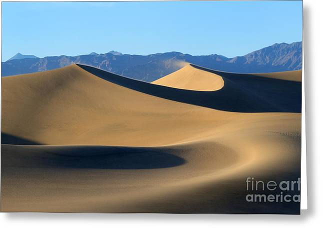 Sand Dunes Greeting Cards - Follow the Curves Greeting Card by Mike Dawson