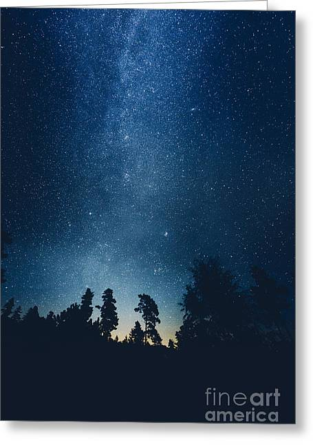 Winter Night Greeting Cards - Follow the stars Greeting Card by HappyMelvin